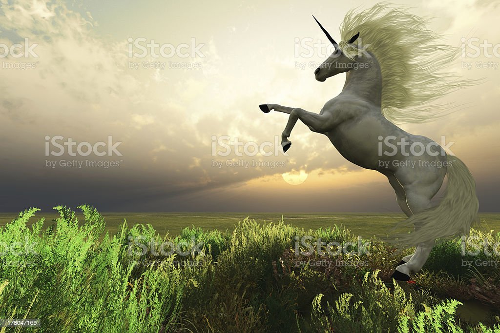 Unicorn Stag stock photo