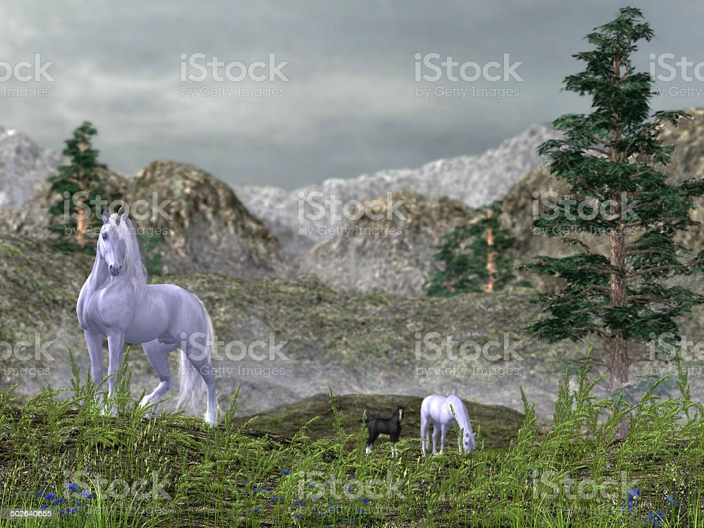 Unicorns in the Mountains stock photo
