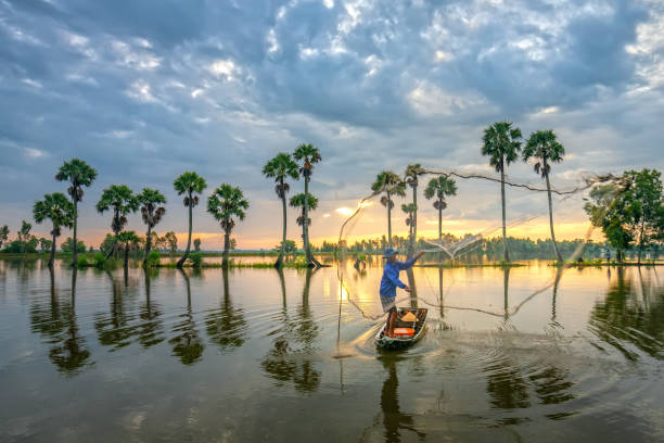 unidentified fishers throw fish net to catch fish a lake in the morning - mekong river stock pictures, royalty-free photos & images