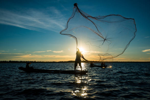 Un-identified silhouette fisher man on boat fishing by throwing fishing net Un-identified silhouette fisher man on boat fishing by throwing fishing net to river during sunset in rural of Thailand fisherman stock pictures, royalty-free photos & images