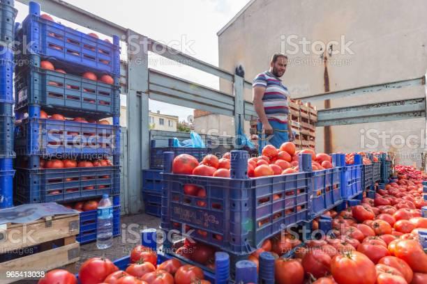 Niezidentyfikowany Turek Sprzedaje Pomidory W Plastikowych Skrzyniach - zdjęcia stockowe i więcej obrazów Ciężarówka