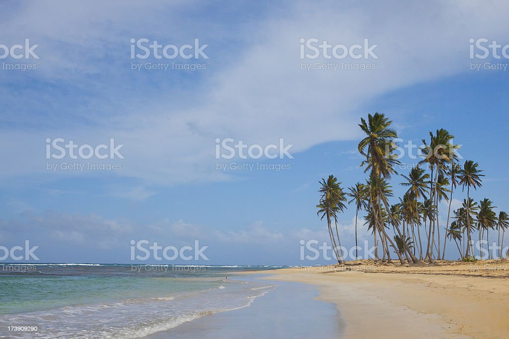 Uninhabited beach stock photo
