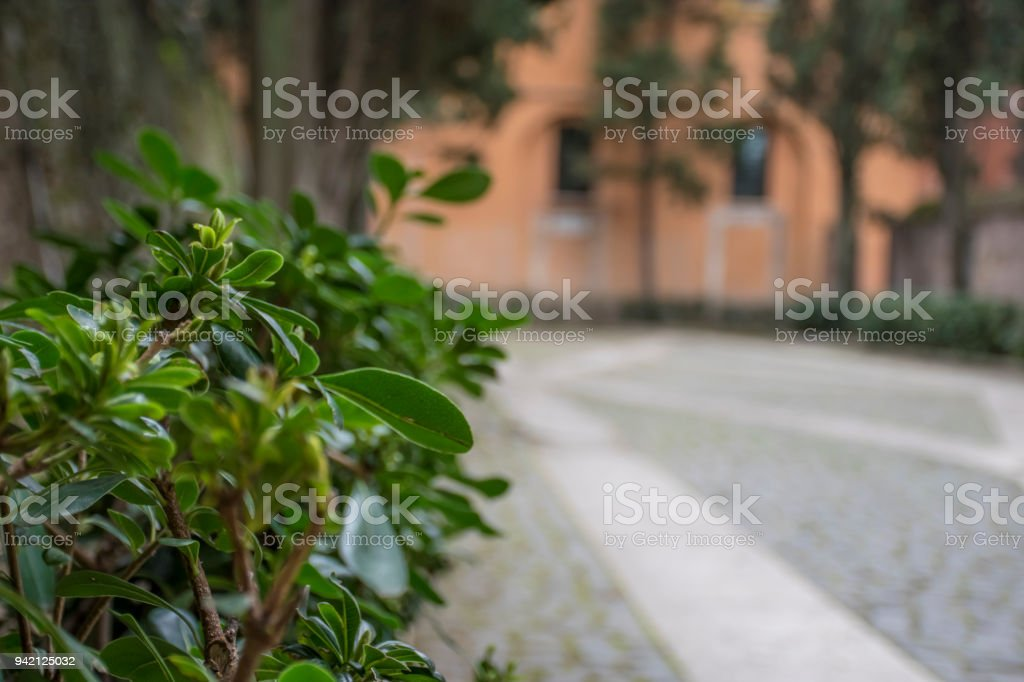 Unique perspectives on Italian Artefacts found in monuments surrounding Piazza Venezia, Italy. stock photo