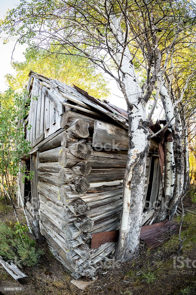 Unique prespective on an old log cabin stock photo