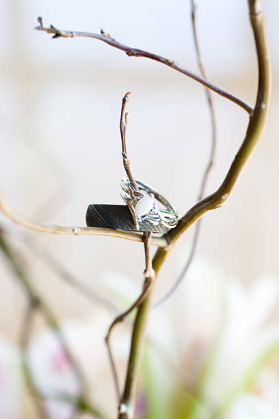 einzigartige ringe auf ast - eheringe öko stock-fotos und bilder