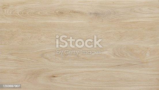 unique wooden pattern, texture of hardwood cut