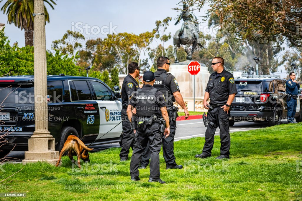 K9 Unit performing exercises in Balboa Park, San Diego - Royalty-free Accidents and Disasters Stock Photo