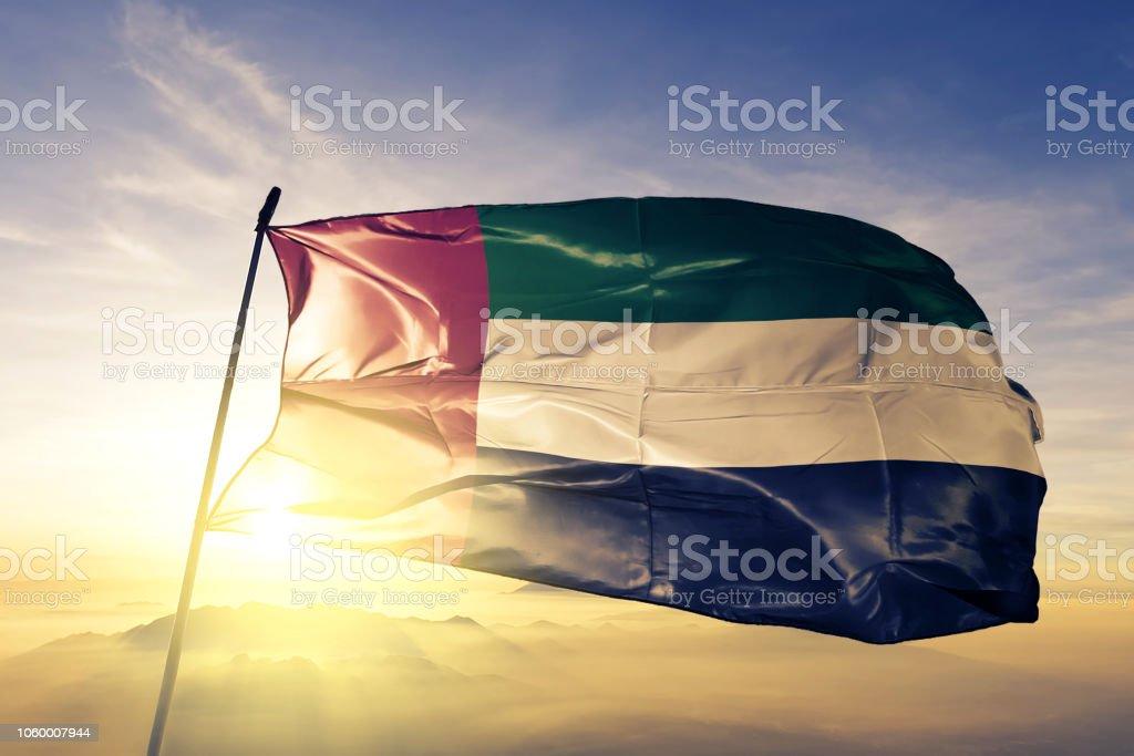 阿拉伯聯合大公國阿聯酋國旗紡織布面料揮舞在頂部日出薄霧 - 免版稅三角旗圖庫照片