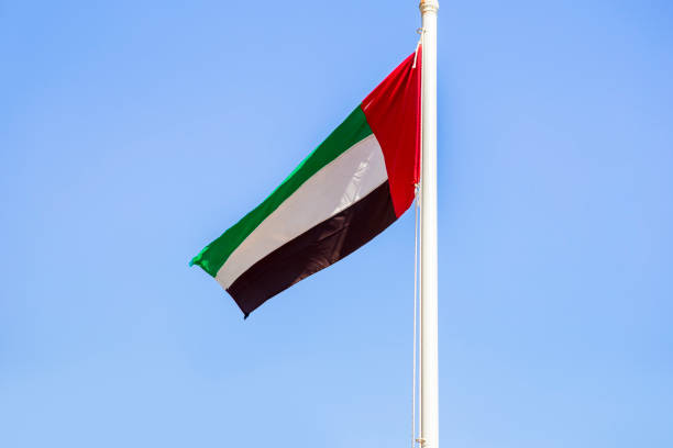 united arab emirates flag waving on the wind - uae national day стоковые фото и изображения