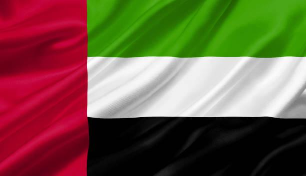 united arab emirates flag waving with the wind, 3d illustration. - uae flag zdjęcia i obrazy z banku zdjęć