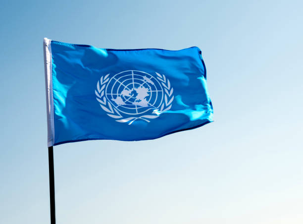 united nations flag waving in the wind - united nations стоковые фото и изображения