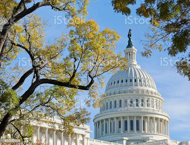United states capitol dome bordered by trees in autumn picture id183250509?b=1&k=6&m=183250509&s=612x612&h=bvkkeb9idjv1xi lzciv515ygznvzguesoum41u 60s=