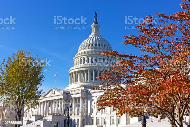 United states capitol in autumn washington dc usa picture id1097688956?b=1&k=6&m=1097688956&s=612x612&h=xoejpgruoxb5a3zcyrsvkjkiwk5aptrqnbp6tr4zic8=
