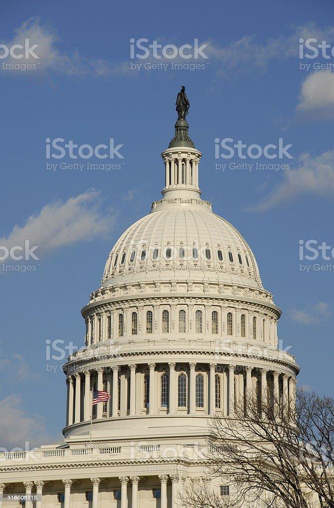 United States Captitol Dome stock photo