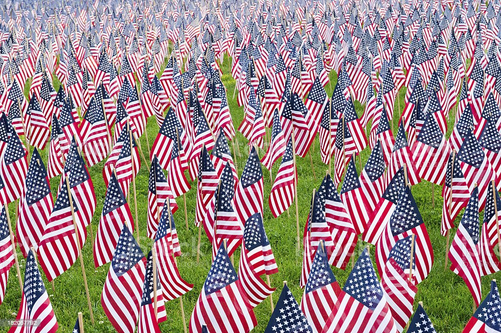 United States Flags royalty-free stock photo