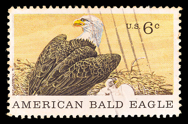 United States Postage Stamp Showing American Bald Eagle Stock Photo