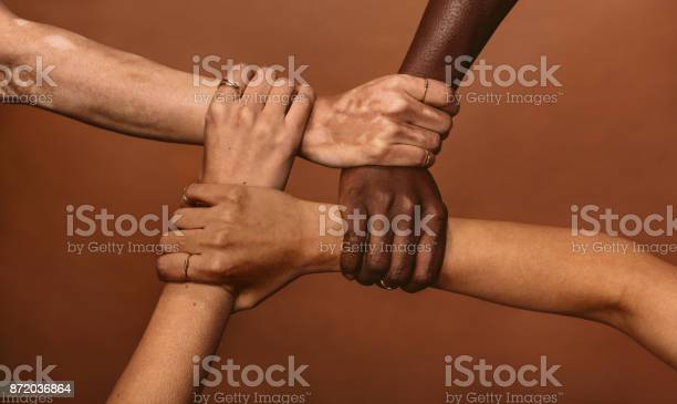 Unity In Diversity Stock Photo - Download Image Now