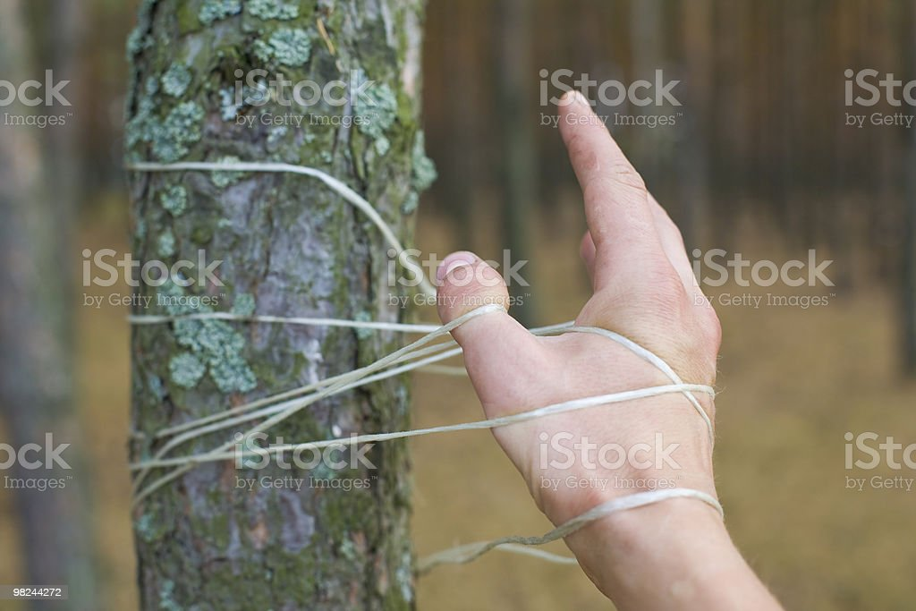 Unity with nature royalty-free stock photo