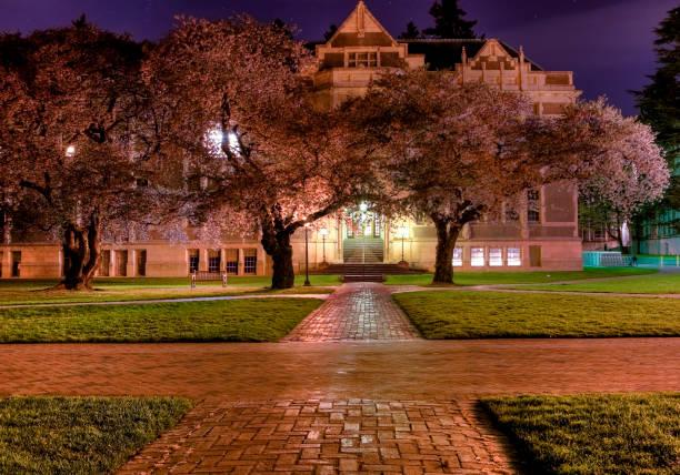 University of Washington, de nuit - Photo