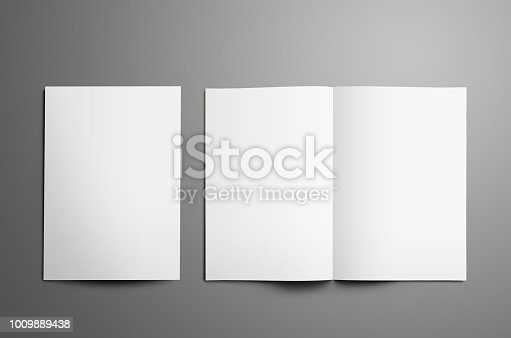 932100364 istock photo Universal tempalte with two white  A4, (A5) bi-fold brochures isolated on gray background. 1009889438