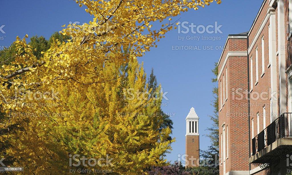 University autumn stock photo