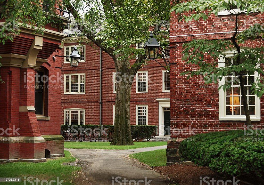 University campus, Harvard stock photo