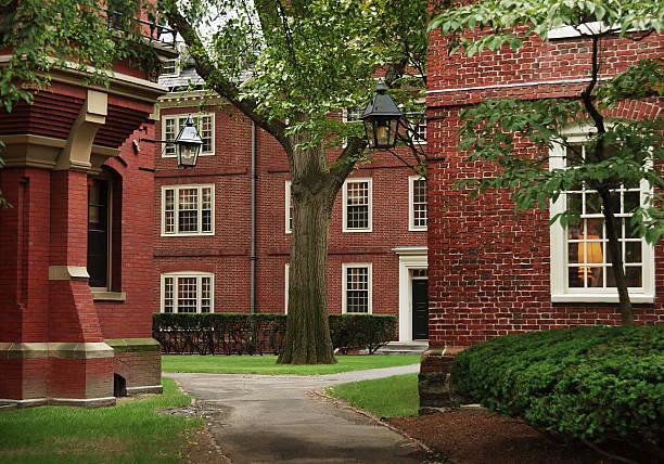 University campus, Harvard  harvard university stock pictures, royalty-free photos & images