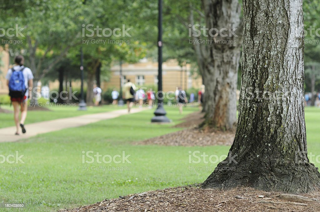 University campus stock photo