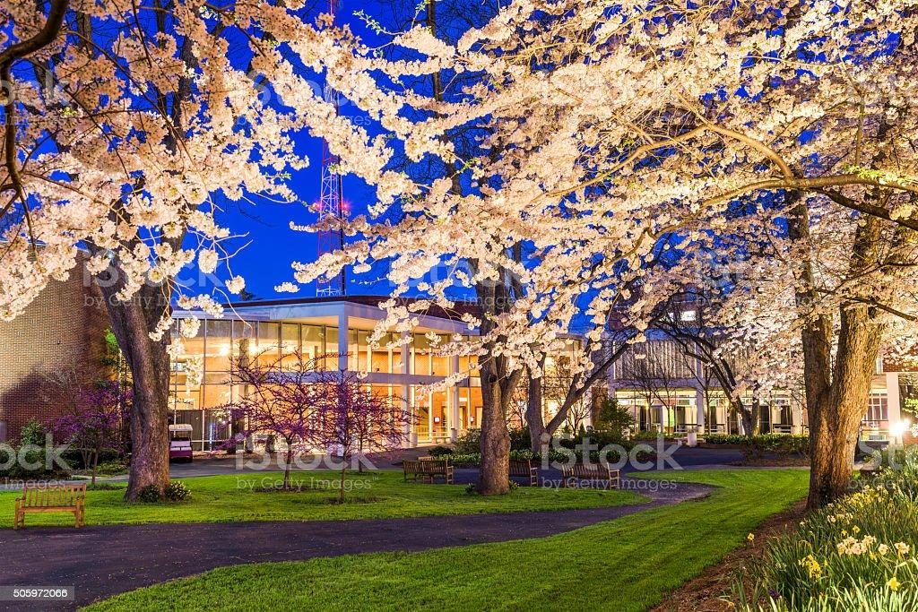 University Campus stock photo