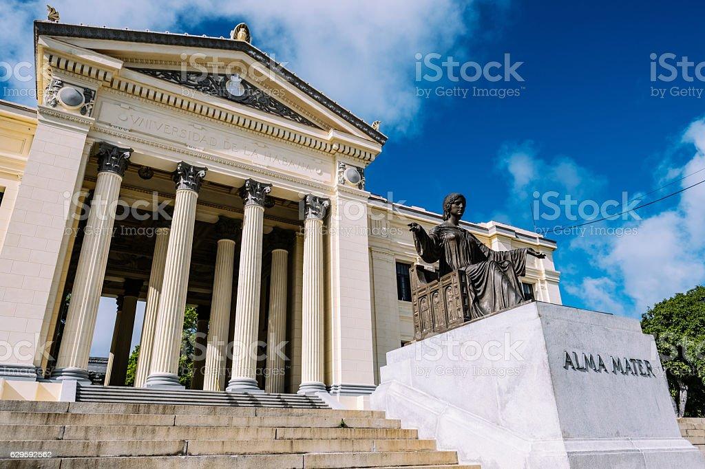 University Gates in Havana stock photo