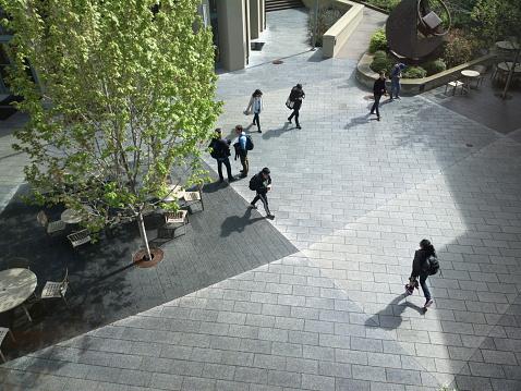 istock University of California, Berkeley 531282571