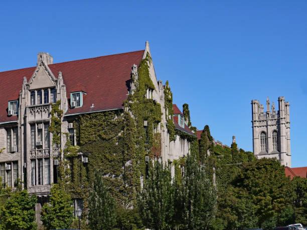university of chicago - ivy building imagens e fotografias de stock