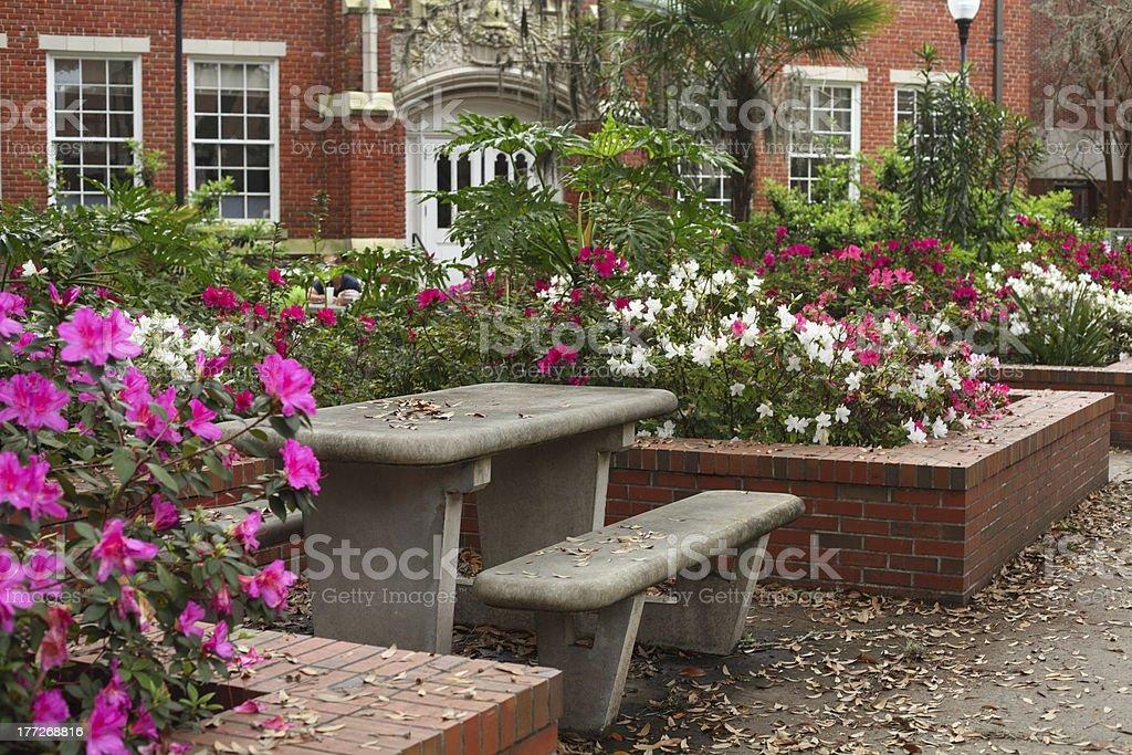 University of Florida Griffin-Floyd Hall Courtyard stock photo