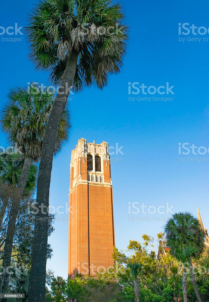 University of Florida royalty-free stock photo
