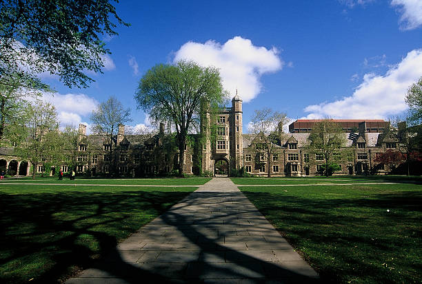 supplement essays for university of michigan What are supplemental essays and how to which you are applying at the university of michigan so it is helpful for students gather all supplement questions.