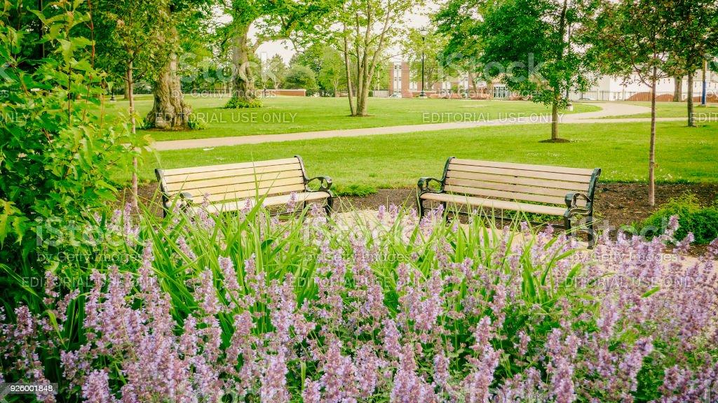 University Of Prince Edward Island >> University Of Prince Edward Island Stock Photo Download
