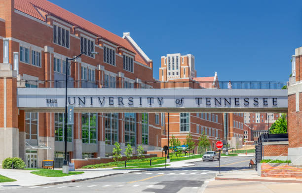 University of Tennessee Entrance and Campus Walkway stock photo