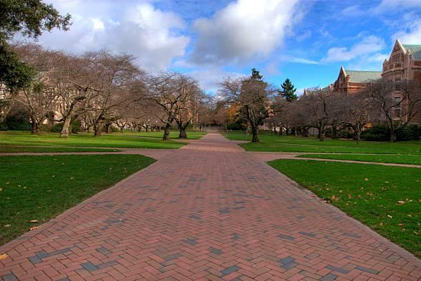 University of Washington Quad - HDR Photo stock photo