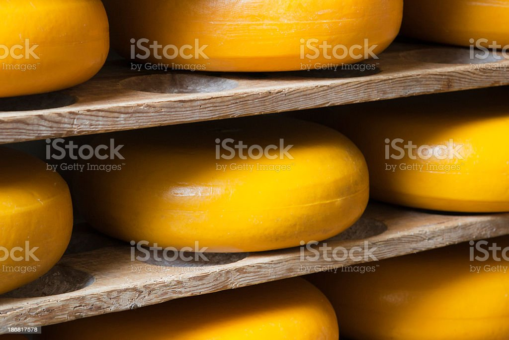Unlabeled wheels of cheese on wooden shelves (XL) royalty-free stock photo