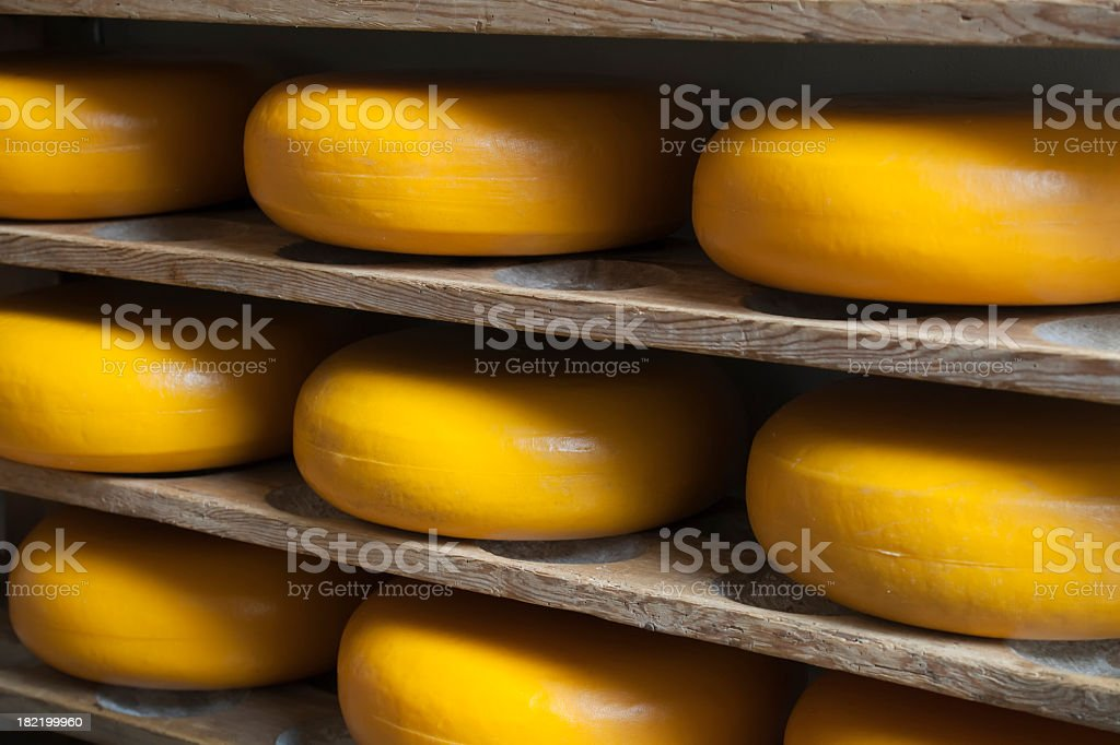 Unmarked wheels of cheese aging on wooden shelves (XXXL) stock photo