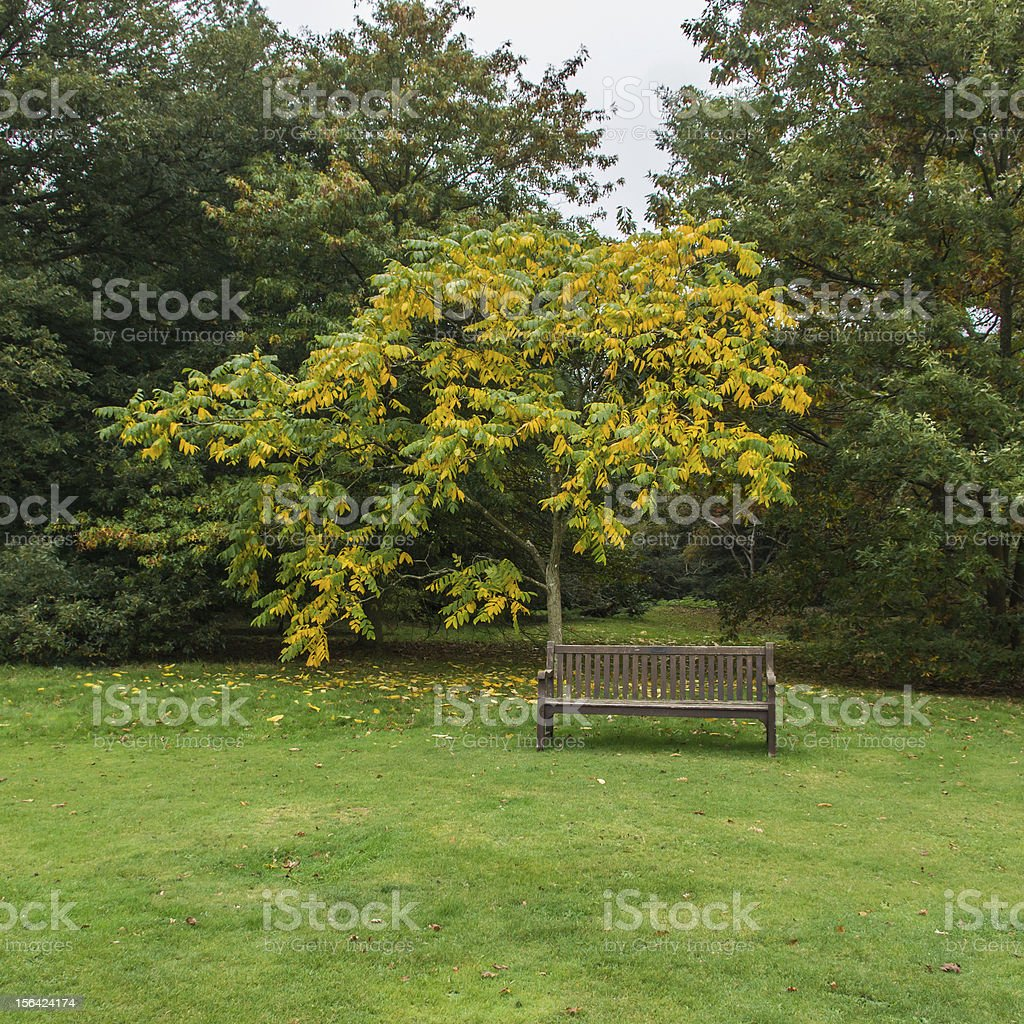 Unoccupied stock photo