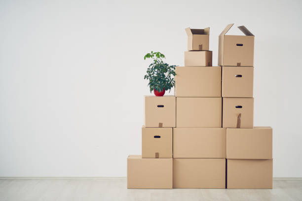 Unpacked boxes in new apartment stock photo
