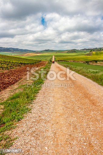 Gravel road through agricultural area on the Camino de Santiago, Way of St. James between Villamayor de Monjardin and Los Arcos in Navarre, Spain, pilgrims in the distance