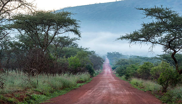 unpaved road in rural africa, dr congo - democratic republic of the congo stock photos and pictures