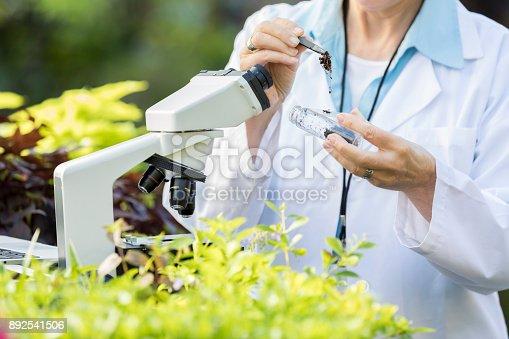 istock Unrecognizable female botanist with soil sample 892541506