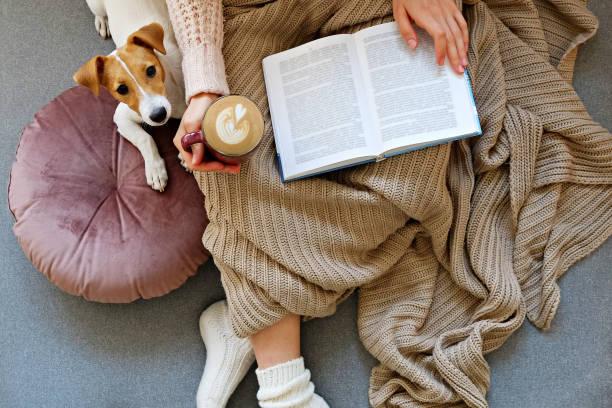 unkenntlich reinweibliche frau sitzt zu hause mit ihrem haustier doggy auf sofa mit teilweisem innenblick. - behaglich stock-fotos und bilder