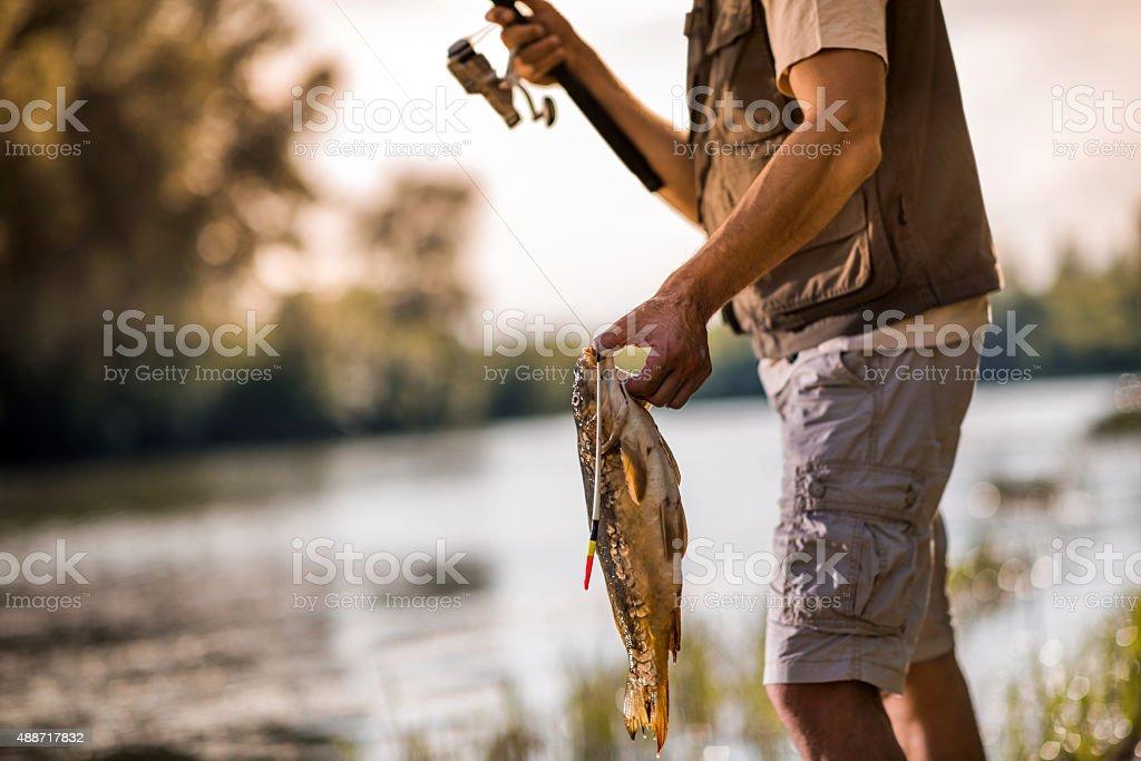 Unrecognizable man caught a common carp on fishing. stock photo