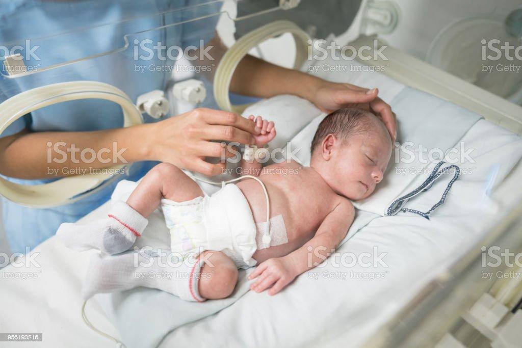 Méconnaissable infirmière caresse un nouveau-né dans un incubateur pendant qu'il dort - Photo