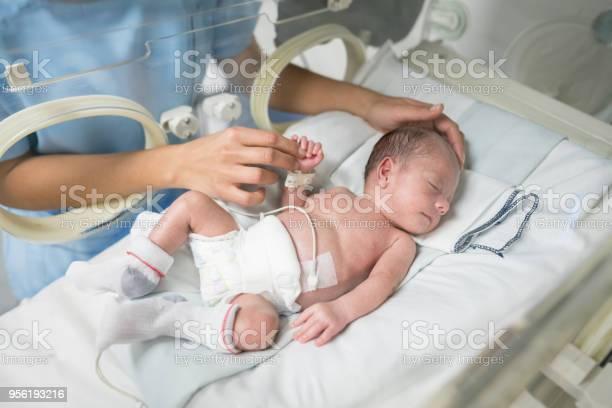 Nicht Erkennbare Krankenschwester Ein Neugeborenes Baby Im Brutkasten Streicheln Während Er Schläft Stockfoto und mehr Bilder von 0-1 Monat