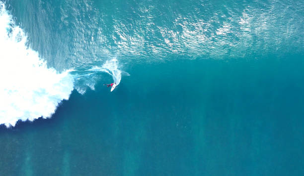 top down: unrecognizable pro surfer riding a stunning blue ocean wave in the sun - surf foto e immagini stock